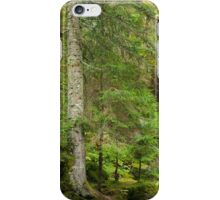 Way Through the Woods iPhone Case/Skin