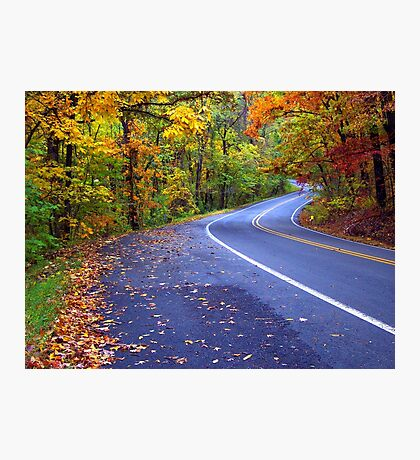 Autumn Drive On The Pig Trail Photographic Print