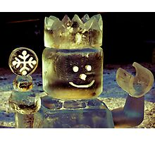 The Toy Ice King Photographic Print