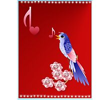 Blue Bird and Love Notes Photographic Print