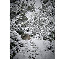 Winter mediterranean wonderland. Photographic Print