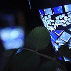 Blue Light, Green Garden by Catherine C.  Turner