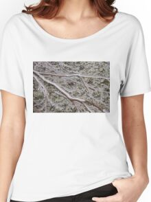 Niagara's Artistic Hand - Frozen Mist Sculpted on Grass and Branches Women's Relaxed Fit T-Shirt