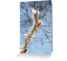 Art of Nature Greeting Card