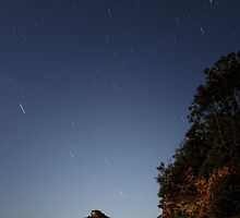 Star gazing by Tam  Locke