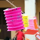Chinese lantern by jacobmoss