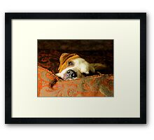 look at me daddy Framed Print