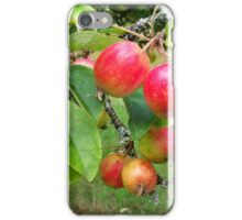 Crab Apple Time iPhone Case/Skin