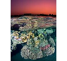 Sunset at the Red Sea Reef Photographic Print