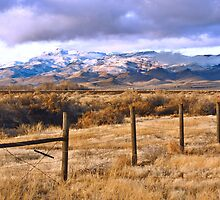 Palomino Valley  Afternoon by SB  Sullivan