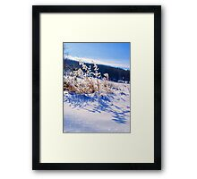 Frozen Wonderland Framed Print