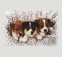 Group Cuddle (Jack Russell Pups) T-Shirt by Andrew Bret Wallis
