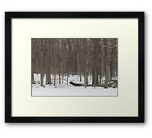 Johnston's Mound Framed Print