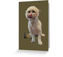 Cute licking puppy. Greeting Card