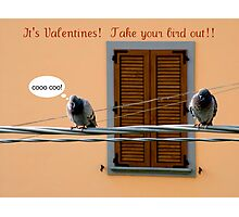 Valentines Take your bird out Photographic Print
