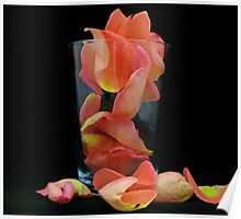 Petals in a Glass Poster