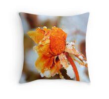 Freeze Dried Throw Pillow