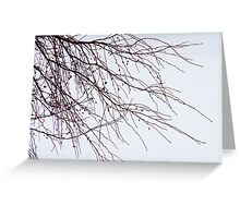 Tree Branch Nature Abstract Greeting Card