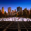 Central Park Skating Rink - New York by Ali Zaidi