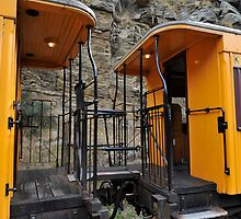 Railway Carriages by Pete  Burton