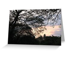 Last Rays - West Park Sunset Greeting Card