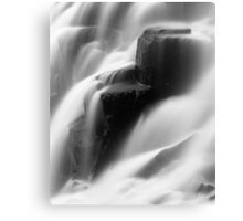 Nature 10  Canvas Print