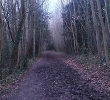 I walk a lonely road. by Cioffi