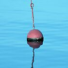 Bouy. by Steve winters Photography