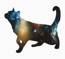CELESTIAL CAT by peter chebatte