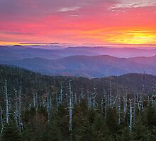 Dawn's End - Clingman's Dome, Great Smoky Mountains National Park by Matthew Kocin