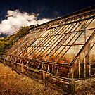 Old Cold Frames by Simon Duckworth