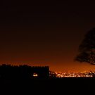 Lickey Hills Toposcope by yampy
