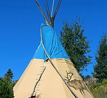 Tee Pee Mission: Wolf by roadsidestills
