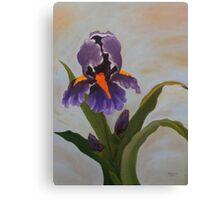Purple Iris-Original Oil Painting 36x48 Canvas Print