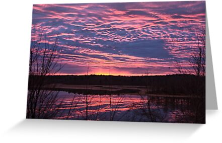 Christmas Eve Sunrise   Jordan Lake, NC by Denise Worden