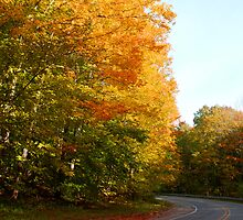 Fall along M-22 by North22Gallery