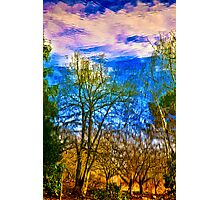 Winter Reflection Photographic Print
