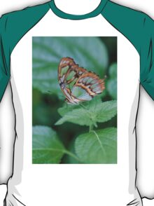 butterfly on the flower T-Shirt