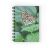 butterfly on the flower Spiral Notebook