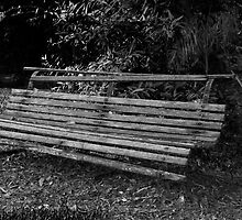 Old Park Bench by diggle