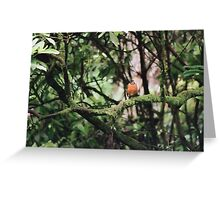 Red Robin On Mossy Branch Greeting Card