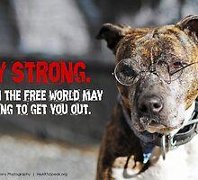 HeARTs Speak Stay Strong Stella by HeARTsSpeak