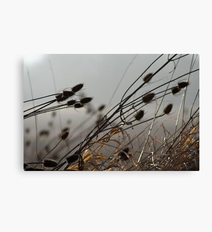 Strong Enough to Bend Canvas Print