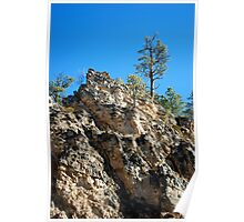 Spearfish Canyon in Black Hills, South Dakota Poster