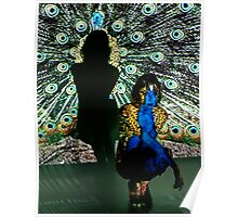 Peacock Projection Art Poster