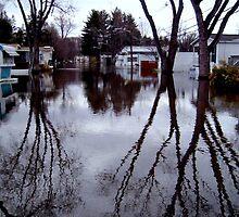 When The Passaic River Decides To Engulf The Neighborhood, Wayne NJ by Jane Neill-Hancock