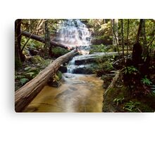 Junction Falls Canvas Print