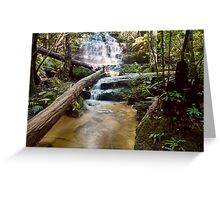 Junction Falls Greeting Card