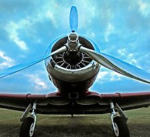 Chromed prop at dusk by Rod Reilly