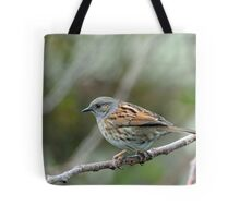 Dunnock Hedge Sparrow in Gore. South Island, New Zealand. Tote Bag